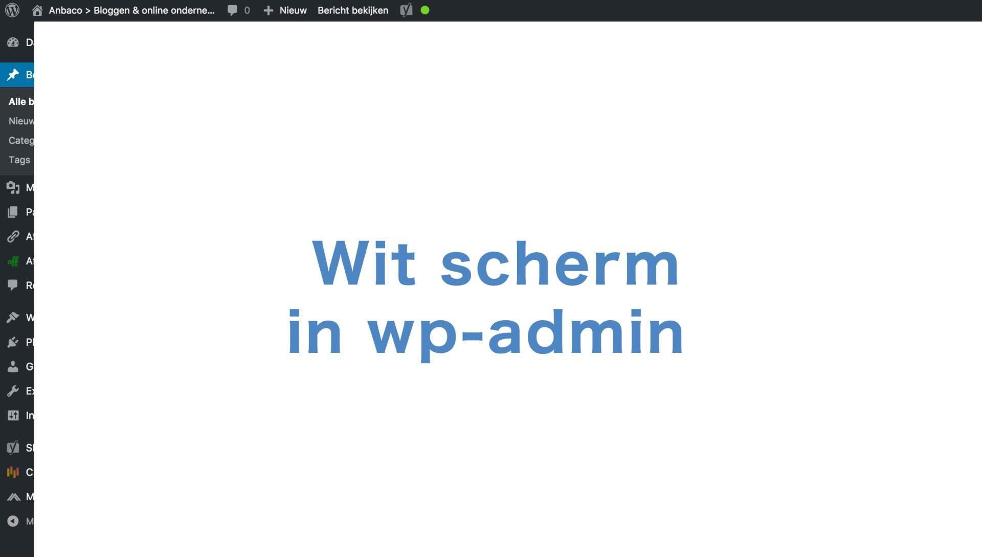 Wit scherm – geen toegang tot wp-admin na update